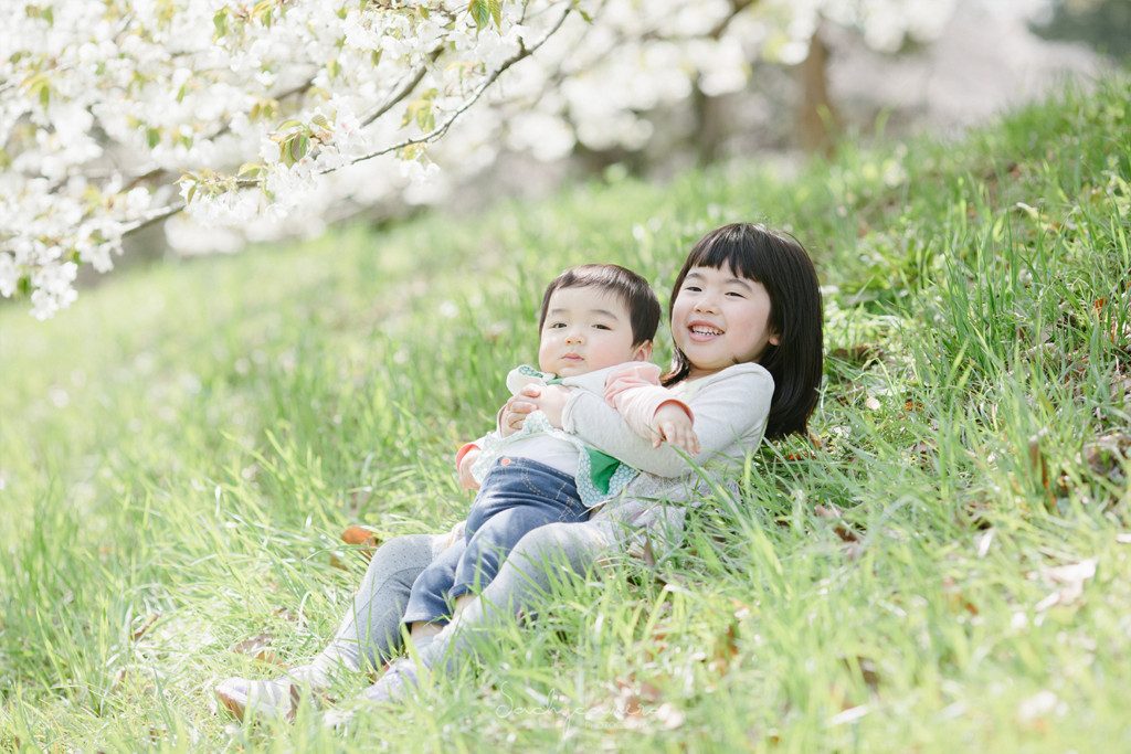 桜の樹の下で姉妹が仲良く座っている