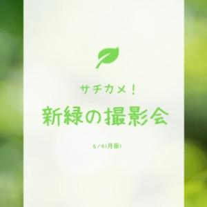 【終了】令和最初の新緑撮影会を開催します!