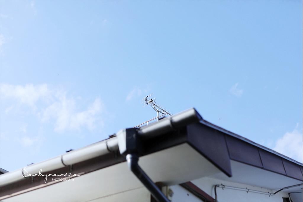 福島のお家の屋根と秋の空