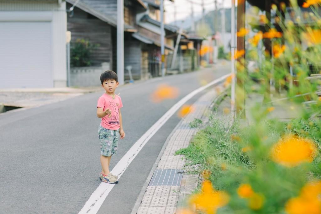 散歩中オレンジ色の花と男の子