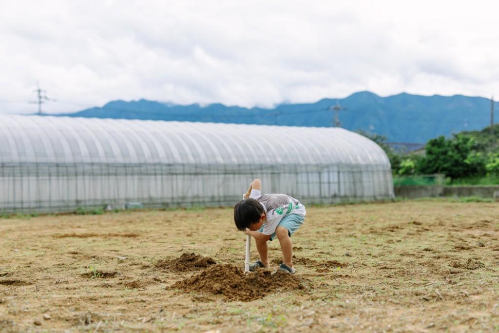 畑で穴掘り