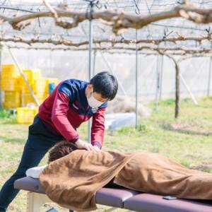 「輝らり果樹園のぶとう畑1日開放DAY」にて整体院仁が青空整体を行いました。