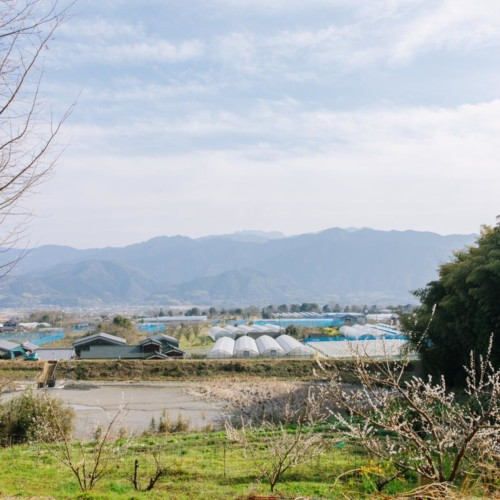 西条市丹原町の風景